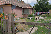 Dogs barking at strnagers on land belonging to poor, rural housing near the town of Bakonyszentlaszlo, Gyor-Moson-Sopron, Hungary