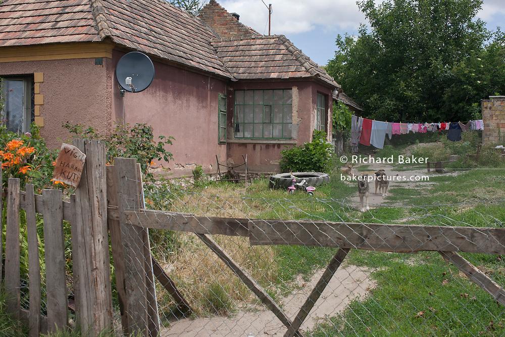 Dogs barking at strnagers on land belonging to poor, rural housing near the town of Bakonyszentlaszlo, Gyor-Moson-Sopron, Hungary