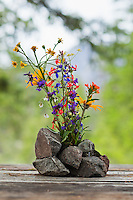 "Wild flowers in a make shift rock ""vase"" on a picnic table."
