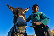 Portrait of a Langza boy with his donkey in Spiti, Himachal Pradesh, India