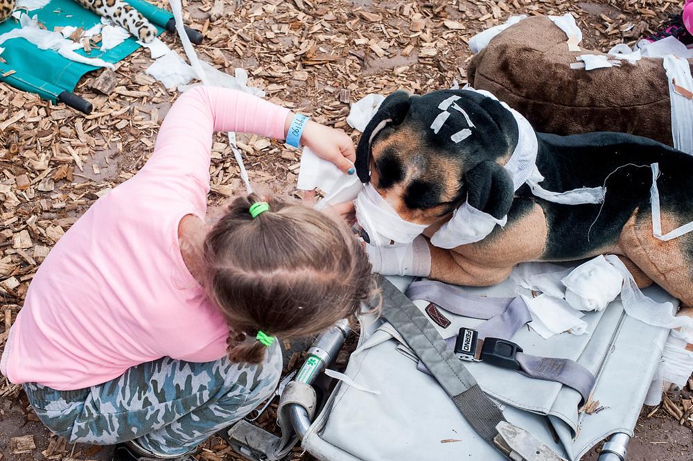 speelgoedknuffel verbinden bij dierenambulance