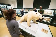 20170209 MUSEO DI STORIA NATURALE FERRARA