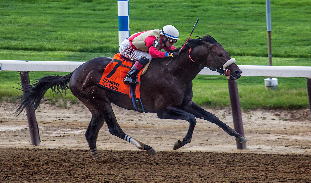 """""""Unified"""", as yet undefeated, wins the Peter Pan"""", with Jose Ortiz aboard. May 14, Belmont Park."""