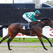 One Penny Piece and Danny Brock winning the 12.00 race