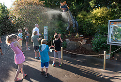 "© Licensed to London News Pictures.  25/05/2017; Bristol, UK. Children enjoy water spray from a model Dilophosaurus sponsored by Tockington Manor School as Bristol Zoo launches DinoMania for invited guests and the media on Thursday evening 25 May. The 11 life-size animatronic dinosaurs will be brought to life before DinoMania opens to the public on Saturday 27 May. The dinosaurs which have been transported from Texas will be at the Zoo for the next three months. They include the enormous Giganotosaurus – one of the largest dinosaurs that ever lived. Bristol Zoo's director of commercial operations, Wendy Walton, said: ""These dinosaurs are being brought to life using mechanical wizardry and specialist animatronics. ""This exhibition is great fun but it also gives us a great opportunity to tell our guests about the very real extinction threat facing many species represented in the Zoo and around the world and the work we are doing to help protect them."" The dinosaurs are on show across a third of the Zoo's 12 acre site and include a Dilophosaurus and a half-size Tyrannosaurus Rex roaring, hissing and moving their heads and tails. The dinosaurs, which roamed the Earth 85 million years ago, will be on show from Saturday (May 27) for 14 weeks until Sunday September 3. The exhibition will even offer budding young palaeontologists the chance to embark on their own mini fossil dig and find out about Bristol's own dinosaur – Thecodontosaurus, discovered in a quarry in 1834. Picture credit : Simon Chapman/LNP"