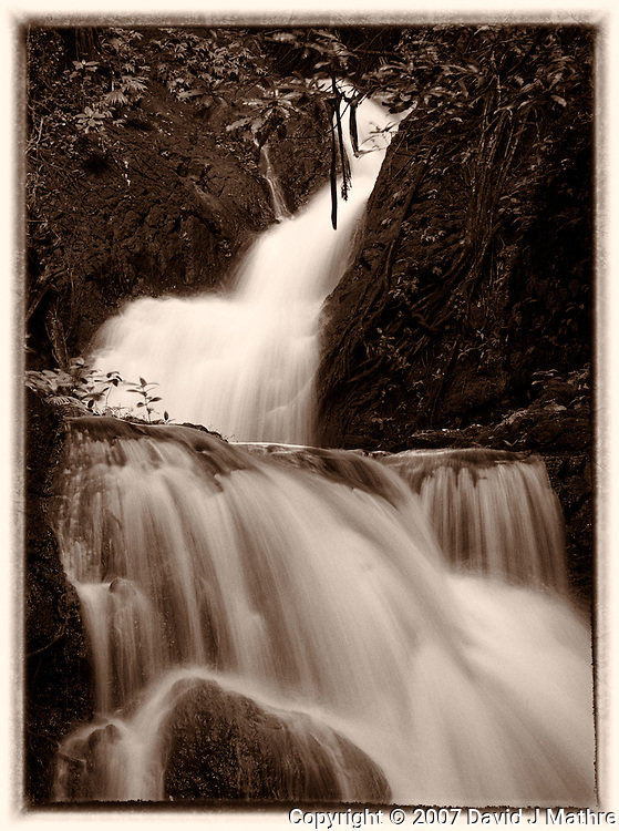 Onomea Water Falls, Hawaii Tropical Botanical Gardens. Image taken with a Nikon D2xs and 105 mm f/2.8 macro (ISO 100, f/11, 1/1.6 sec). Image processed with Capture One Pro 6, PhotoShop CS5, and Nik Silver Efex Pro 2.