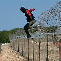 Zimbabweans immigrants Fence