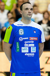 Peter Pucelj #6 of Slovenia during handball match between National teams of Slovenia and Hungary in play off of 2015 Men's World Championship Qualifications on June 15, 2014 in Rdeca dvorana, Velenje, Slovenia. Photo by Urban Urbanc / Sportida