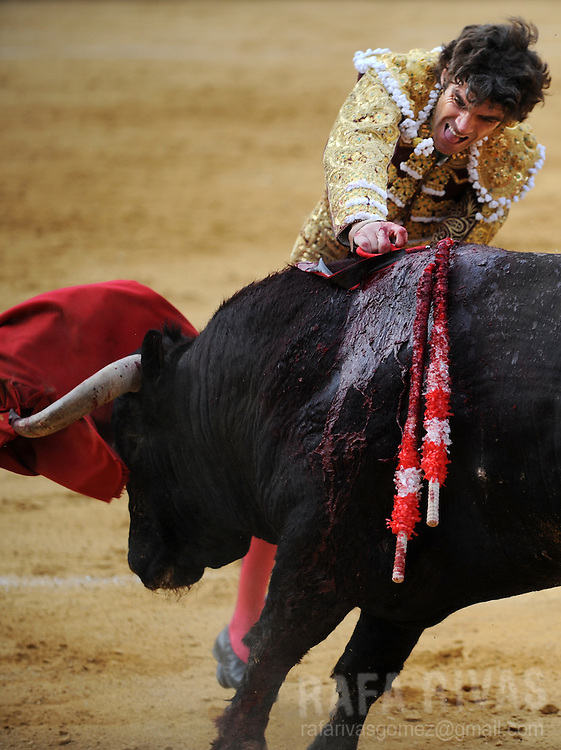 Spanish matador Jose Tomas, kills with sword a Nunez de Cubillo fighting bull, during a corrida of the San Antolin festivities at the Palencia bullring, on September 2, 2009. PHOTO/Rafa Rivas