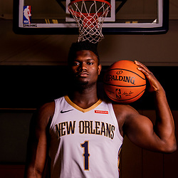 Sep 30, 2019; New Orleans, LA, USA; New Orleans Pelicans forward Zion Williamson (1) poses for a portrait during Media Day at the Ochsner Sports Performance Center . Mandatory Credit: Derick E. Hingle-USA TODAY Sports