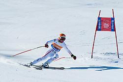 LANZINGER Matthias, AUT, Downhill, 2013 IPC Alpine Skiing World Championships, La Molina, Spain