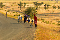Maasai tribal people with their bicycles on road, Tanzania
