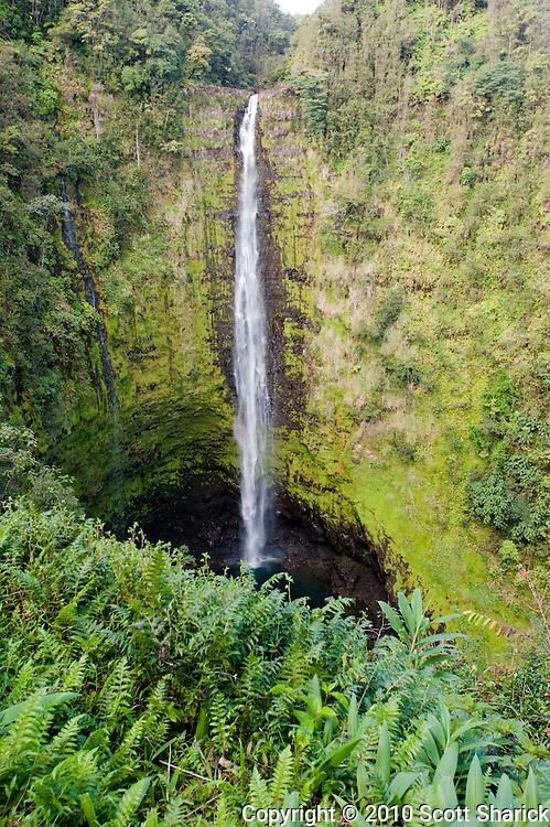 A vertical image of Akaka Falls on the Big Island of Hawaii.