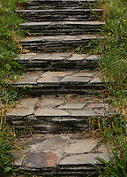 Grass bordered slate steps in Ireland