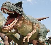 Tyrannosaurus rex (T. rex)