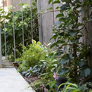 Brooklyn Side Garden