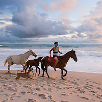 Local horse guides ride their horses along the beach at sunset on Playa Carmen near Banana Beach lounge in Santa Teresa, Costa Rica.
