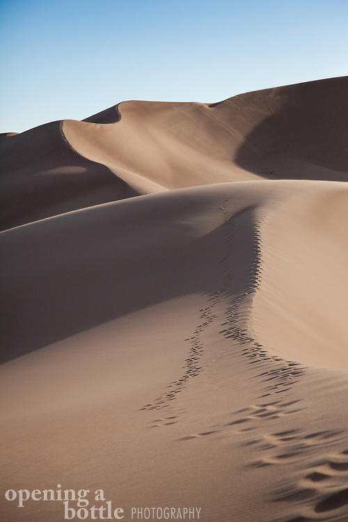 Foot prints follow the ridge lines of the dune field, Great Sand Dunes National Park, Colorado.