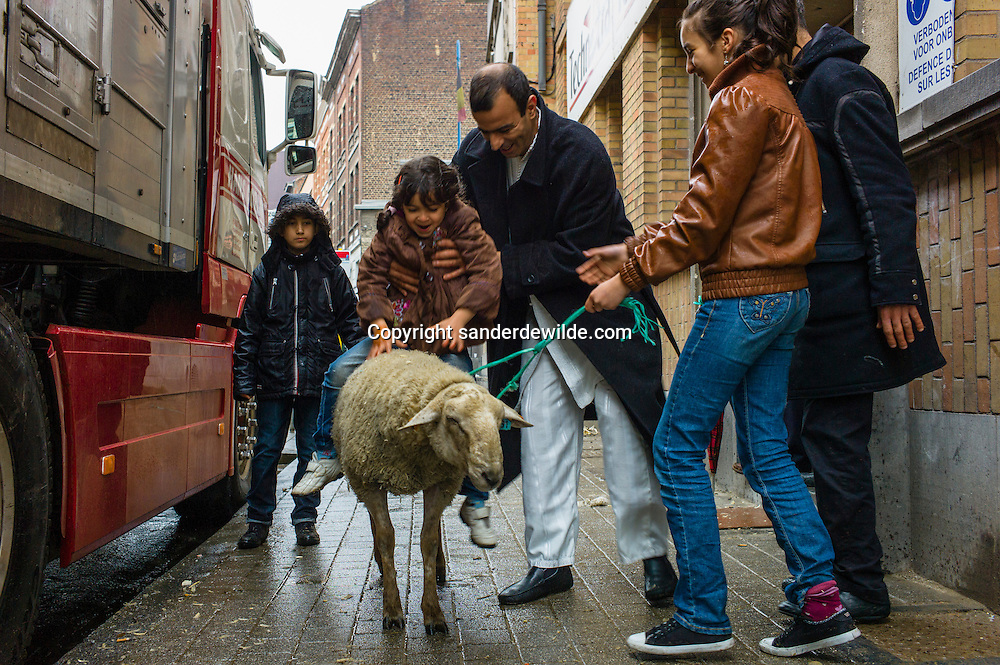 2012 26 October Brussels, Belgium. During Eid al-Adha, many Muslim families sacrifice a sheep and share the meat with the poor. A family with a father putting his kid on the back of a sheep.