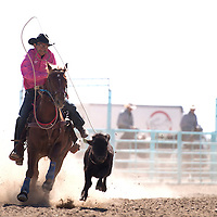 100214      Cayla Nimmo<br /> <br /> Travor Jim competes in the calf roping competition during the Northern Navajo Nation Fair in Shiprock Thursday.