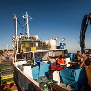 Rovinj 2015 07 11 Kroatien<br /> Fiskeb&aring;t i hamnen i Rovinj<br /> ----<br /> FOTO : JOACHIM NYWALL KOD 0708840825_1<br /> COPYRIGHT JOACHIM NYWALL<br /> <br /> ***BETALBILD***<br /> Redovisas till <br /> NYWALL MEDIA AB<br /> Strandgatan 30<br /> 461 31 Trollh&auml;ttan<br /> Prislista enl BLF , om inget annat avtalas.