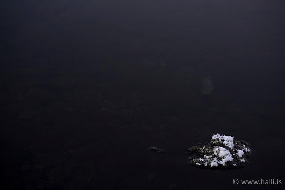 Frost and stones, ath the lake ThingvellirIceland,  at -13°C -Þingvallavatn að vetri