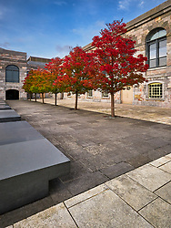 Gorgeous autumn colours of the trees at Royal William Yard. <br />