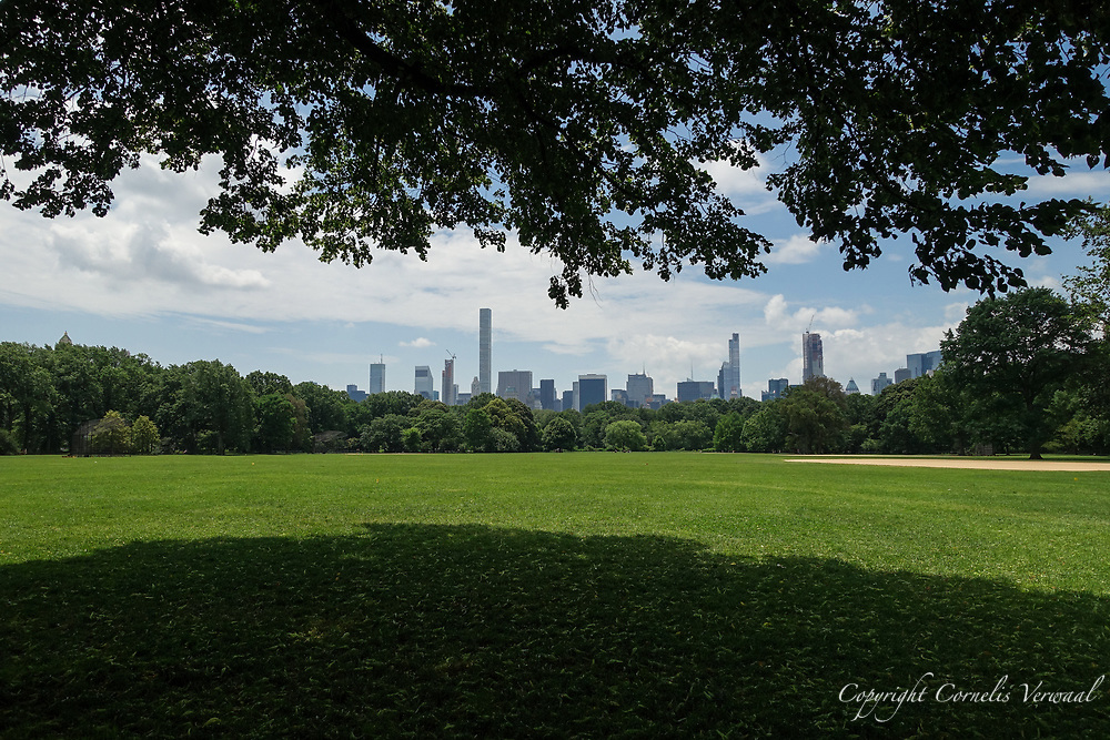 The Great Lawn in Central Park and midtown Manhattan skyline.