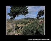 Paesaggi di Villagrande