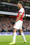 GOAL 4-1 Arsenal striker Pierre-Emerick Aubameyang (14) celebrates after Arsenal's fourth during the Premier League match between Arsenal and Fulham at the Emirates Stadium, London, England on 1 January 2019.