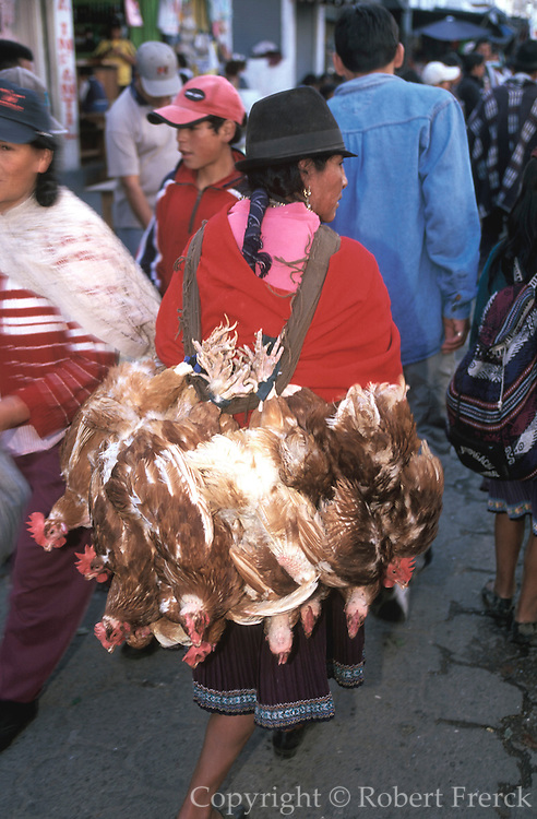 ECUADOR, MARKETS Otavalo, woman with live chickens