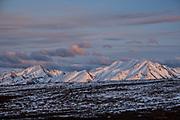 An early season snow dusts the Alaskan Range of mountains at sunset in Denali National Park, McKinley Park, Alaska