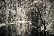 The Merced River and Cathedral Rock in winter, Yosemite National Park, California USA