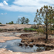 The Arabia Mountain, part of the Davidson-Arabia Mountain Nature Preserve, is a monadnock with its peak of 954 feet (290m) above sea level.