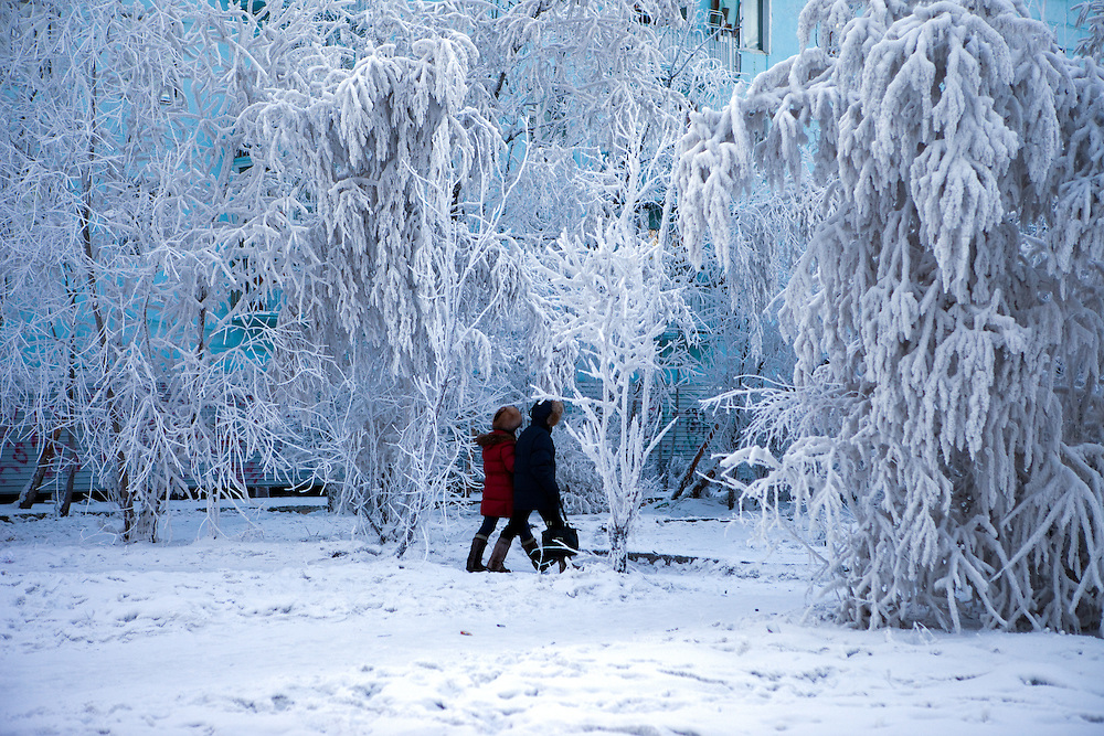 Street scene with snow covered trees in the city of Yakutsk. Yakutsk is a city in the Russian Far East, located about 4 degrees (450 kilometres) south of the Arctic Circle. It is the capital of the Sakha (Yakutia) Republic in Russia with a major port on the Lena River. The city has a population of 264.000 (2009). Yakutsk is one of the coldest cities on Earth. The average monthly winter temperature in January is around -43,2 C. Yakutsk, Jakutsk, Yakutia, Russian Federation, Russia, RUS, 15.01.2010.