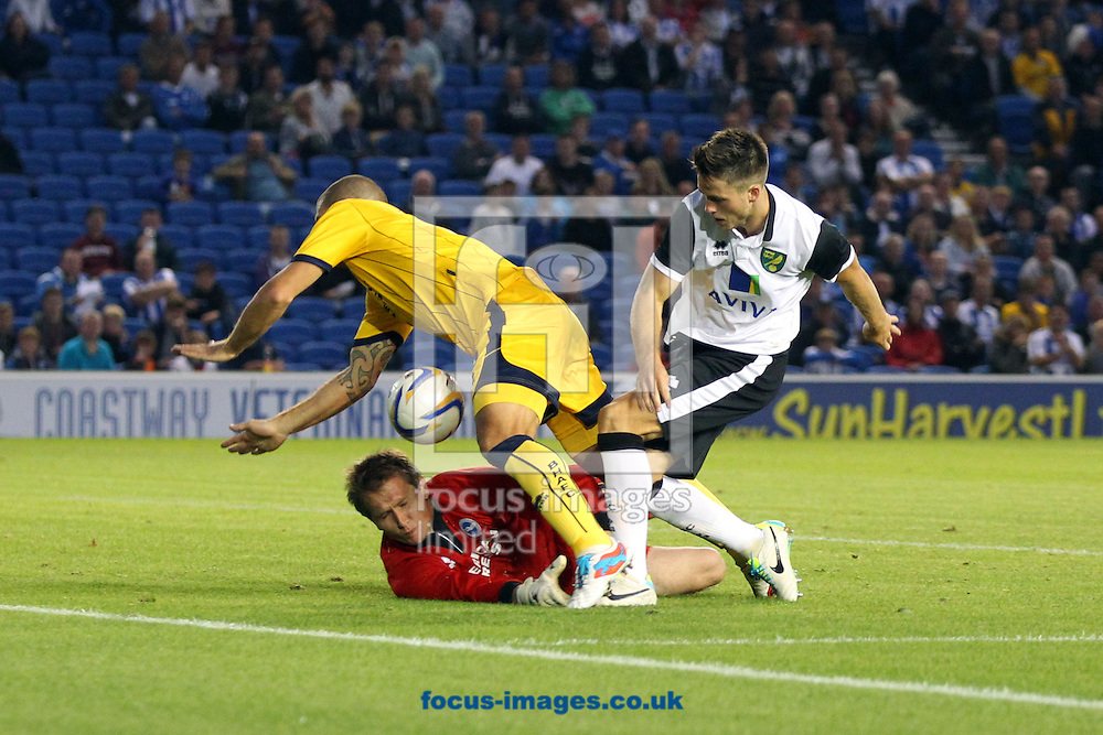 Picture by Paul Chesterton/Focus Images Ltd +44 7904 640267<br /> 30/07/2013<br /> Ricky Van Wolfswinkel of Norwich has a shot on goal but sees it saved by Tomasz Kuszczak of Brighton during the Pre Season Friendly match at the American Express Community Stadium, Brighton and Hove.