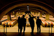 To Kalon cellar, Robert Mondavi Winery, Napa Valley