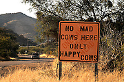 """A sign that reads, """"No Mad Cows Here Only Happy Cows"""", is posted along McGee Ranch Road in McGee Settlement, Arizona, USA."""