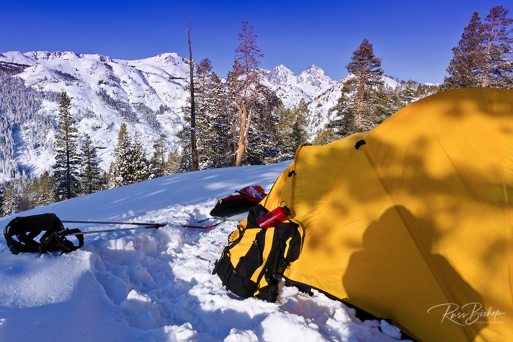 Yellow dome tent in winter,  Ansel Adams Wilderness, Sierra Nevada Mountains, California USA