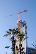 Middle East, Israel, Tel Aviv, Construction progresses in the Mideast Palm trees in the foreground
