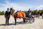 Ester Hoogeveen - Sanbuorster Morris<br /> Hippiade Mennen 2019<br /> © DigiShots
