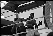 Ali vs Lewis Fight, Croke Park,Dublin..1972..19.07.1972..07.19.1972..19th July 1972..As part of his built up for a World Championship attempt against the current champion, 'Smokin' Joe Frazier,Muhammad Ali fought Al 'Blue' Lewis at Croke Park,Dublin,Ireland. Muhammad Ali won the fight with a TKO when the fight was stopped in the eleventh round...A right to the head,Lewis is pictured as he drives this attack home.