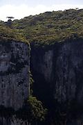 Cambara do Sul_RS, Brasil...Canion Fortaleza no Parque Nacional da Serra Geral. Ocorrencia principalmente de Mata de Araucaria ou Pinheiro do Parana em Cambara do Sul, Rio Grande do Sul...Fortaleza canion in the Serra Geral National Park in Cambara South, Rio Grande do Sul...Foto: JOAO MARCOS ROSA / NITRO