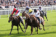 LUCANDER (3) ridden by Ben Curtis and trained by Ralph Beckett winning The Play CORRECT4 For Free With Coral Nursery Stakes over 1m (£30,000)  during the York Coral Sprint Trophy meeting at York Racecourse, York, United Kingdom on 12 October 2019.