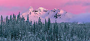A winter sunrise bathes 9,177 ft. Broken Top Peak with alpenglow light, in the Cascade Range of Central Oregon.