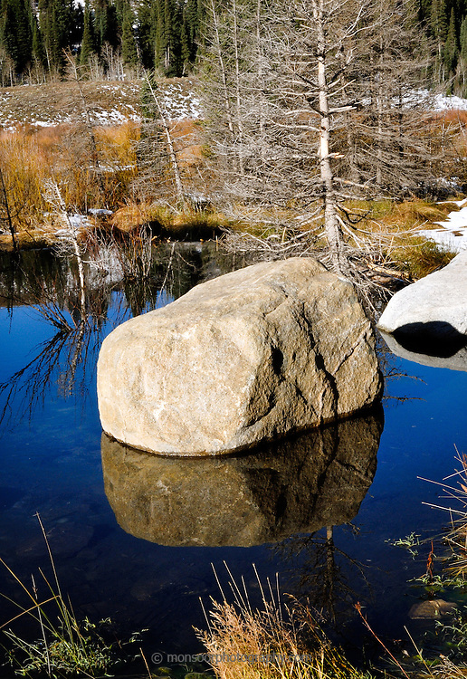 Reflections in an old beaver pond on Big Cotton Wood Canyon outside Salt Lake City,Uyah.
