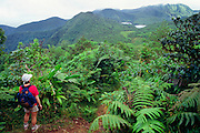 356203-1002~ Copyright:  George H. H. Huey ~ Hiker looks east, towards the Atlantic Ocean from the Boeri Lake Trail.   Morne Trois Pitons National Park.  Dominica.  Release#124