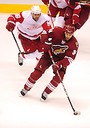 Apr 23, 2010; Glendale, AZ, USA; Phoenix Coyotes center Daniel Winnik (34) handles the puck during the third period of game five in the first round of the 2010 Stanley Cup Playoffs at Jobing.com Arena.  The Red Wings defeated the Coyotes 4-1.  Mandatory Credit: Jennifer Stewart-US PRESSWIRE