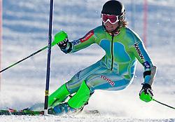 29.10.2010, Moelltalergletscher, Flattach, AUT, Training Slovenia National Ski Team, im Bild Miha Kuerner, EXPA Pictures © 2010, PhotoCredit: EXPA/ J. Groder