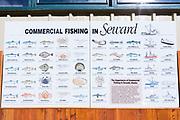 Olika typer av fisk som finns i Seward, Alaska<br /> <br /> Photographer: Christina Sjogren<br /> <br /> Copyright 2018, All Rights Reserved